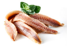 Anchovies with oregano. Isolated on white background Stock Images