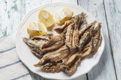 Anchovies series 05 Royalty Free Stock Photos