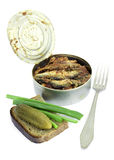 Anchovies in a tin can with rye bread Stock Images