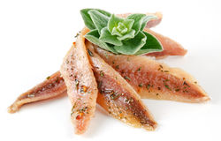 Anchovies on white with spice and oregano Royalty Free Stock Photo