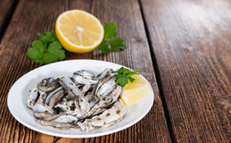 Anchovis Stock Photography