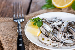 Anchovis Stock Image