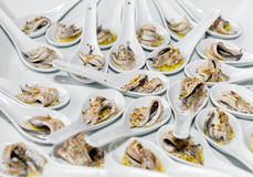 Anchovy appetizer. Appetizer of anchovies lying in the ceramic spoons Stock Photography