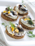 Anchovy canapes. Garnished with dill and jolk Royalty Free Stock Photo