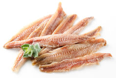 Anchovy. Fillet with oregano on white Stock Images