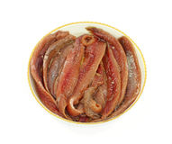 Anchovy Fillets Round Dish Royalty Free Stock Photo