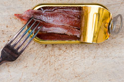 Anchovy fillets in a tin can. On a wooden board with a fork Royalty Free Stock Photography