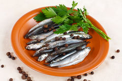 Anchovy fish on a rustic plate Royalty Free Stock Photos