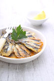 Anchovy fritters. Odessa cuisine cooked Stock Image