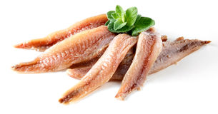 Anchovy with herbs Royalty Free Stock Images