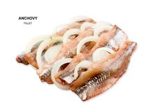 Anchovy filet isolated. Anchovy with onion rings isolated on white background. Fish filet with clipping path. Flat lay and top view Stock Photos