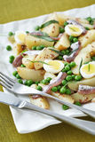 Anchovy and potatoe salad Royalty Free Stock Photography