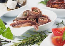 Free Anchovy Rolls Served As Appetizer Stock Photo - 21211240