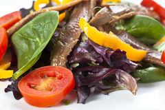 Anchovy salad Royalty Free Stock Images