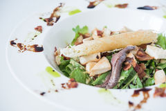 Anchovy Salad. On white plate Royalty Free Stock Photos