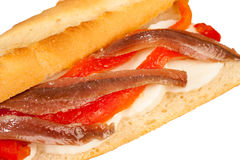 Anchovy sub Royalty Free Stock Image