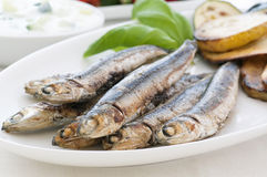 Anchovy with vegetable. And tzatziki Royalty Free Stock Photos