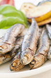 Anchovy with vegetable Royalty Free Stock Photo