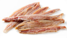 Anchovy on white Stock Image
