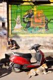 Ancião com cão Fotografia de Stock Royalty Free