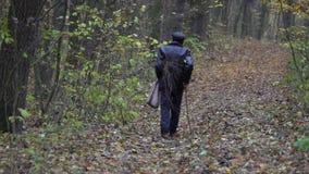 Ancião com galho na floresta do outono vídeos de arquivo