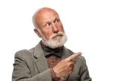 Ancião com uma barba grande e um sorriso Fotos de Stock
