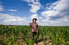 Ancião no campo de milho Fotos de Stock Royalty Free