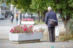 Ancião que anda com suas mãos em uma vara de passeio de madeira, natura imagens de stock royalty free