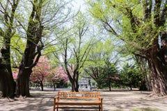 Ancien bureau du gouvernement du Hokkaido Photographie stock libre de droits