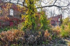 Anciennes ruines d'usine photo libre de droits