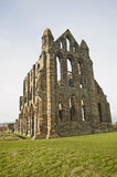 Ancient Abbey ruins Royalty Free Stock Photography