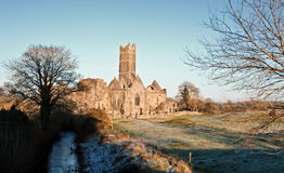 Ancient abbey, tourist attraction, ireland Royalty Free Stock Image