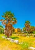 At Ancient Agora of Kos Royalty Free Stock Photo