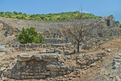 Ancient amphitheater ruins with old dry tree. The Great amphitheater ruins with old dry tree at front on sunny day in Ephesus, Turkey Stock Photography