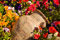Ancient amphora between flowers Stock Photos