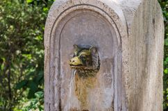 An ancient antique drinking fountain nose of a rim in the shape of a wolf`s head from which water flows.  royalty free stock photo