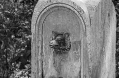 An ancient antique drinking fountain nose of a rim in the shape of a wolf`s head from which water flows.  royalty free stock photography
