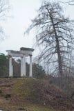 Ancient arbor on a hill Stock Photos