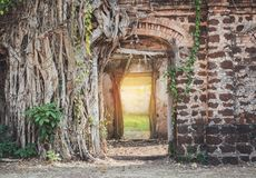 An ancient archway with light. Beam of the success back of the door ,an ancient archway stock images