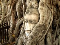 Ancient, Art, Asia Royalty Free Stock Photo