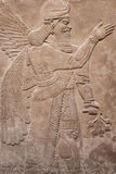 Ancient assyrian winged god Royalty Free Stock Images