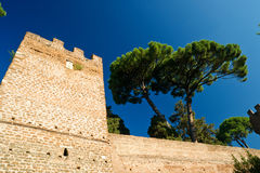 The ancient Aurelian Walls in Rome Stock Photo