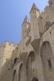 Ancient Avignon Cathedral and Palais des Papes Stock Image