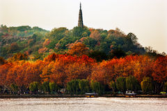 Ancient Baochu Pagoda West Lake Hangzhou Zhejiang China Royalty Free Stock Image