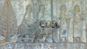 Ancient bas-reliefs of Persepolis, Iran Royalty Free Stock Photos