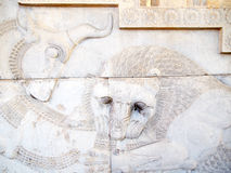 Ancient bas-reliefs of Persepolis, Iran Stock Images