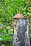 Ancient beehive in the foliage Stock Photography