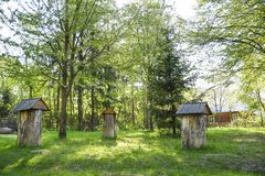 Ancient hives in the middle of forest glade, made from trunk of royalty free stock image