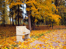 Ancient bench in autumn park Stock Image