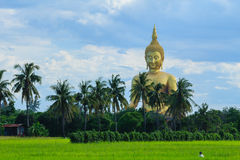 Ancient Big Buddha Image in the Field at Muang Temple , Ang Thon Royalty Free Stock Photos